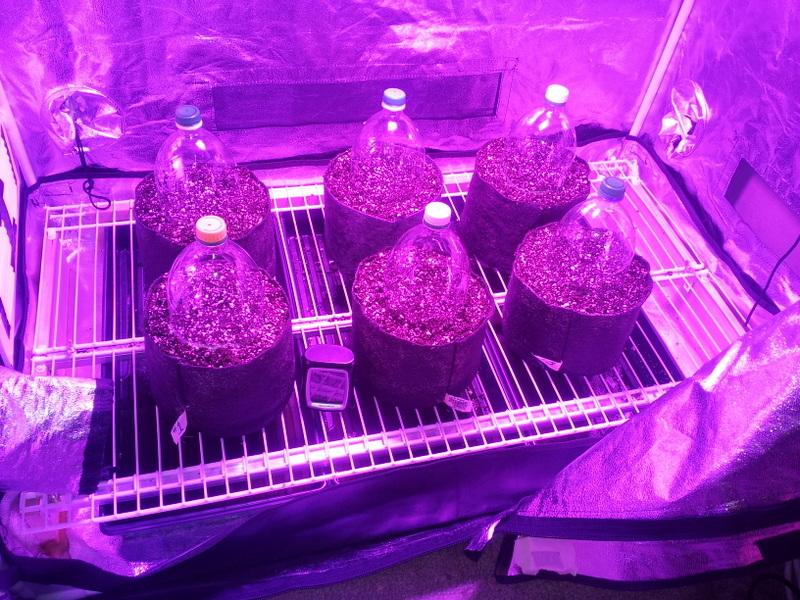 Pro-Mix HP + Earth Juice full line up | Marijuana Growing Forum