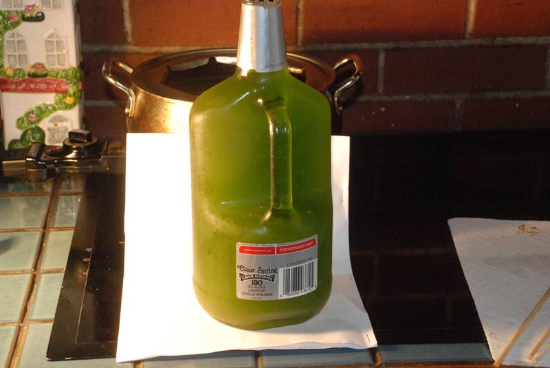 10 minute frozen extraction-1.jpg