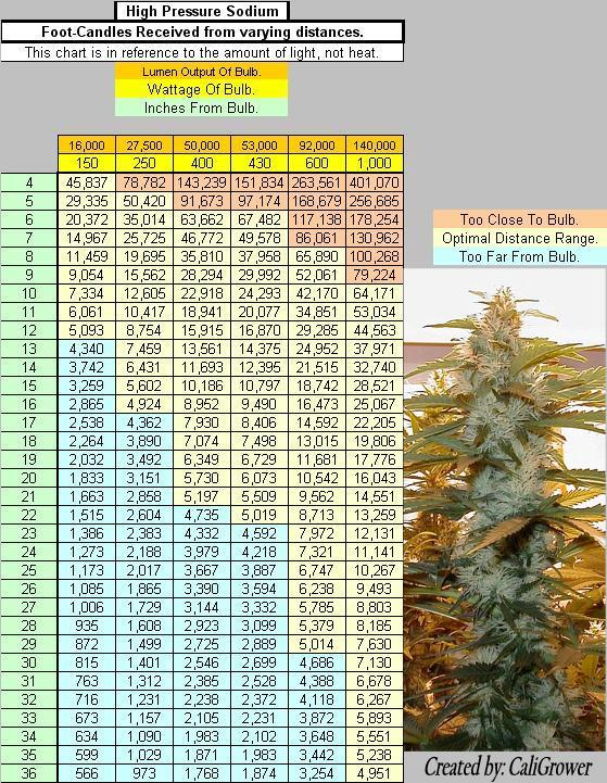 1063931-Foot-Candle%20Chart%20HPS%20New%20Done.jpg
