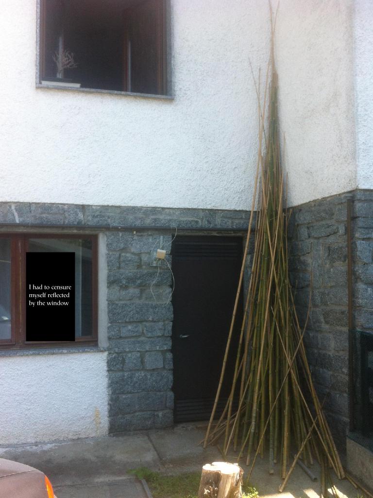 bamboo2.png