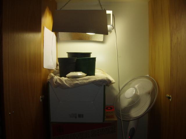 Closet Setup.JPG