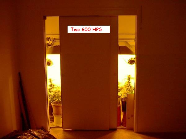 doors cracked lights on.jpg