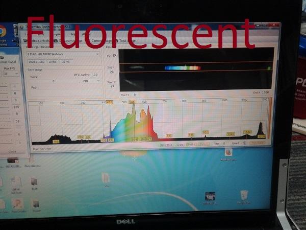 Fluorescent tube.jpg