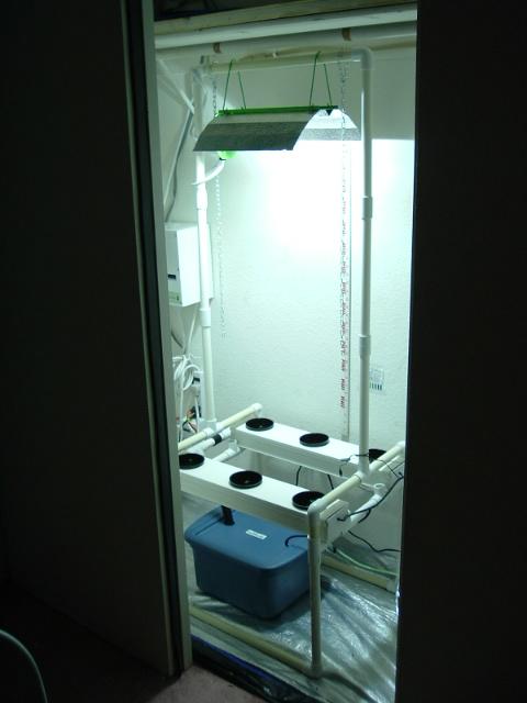 growroom 016.jpg