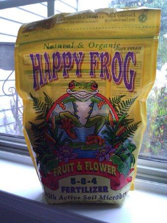 happyfrog.jpg