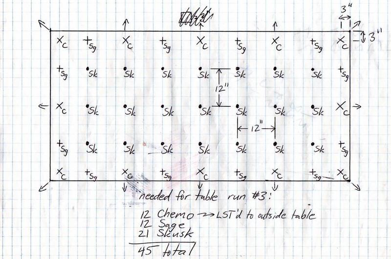 img113.jpg