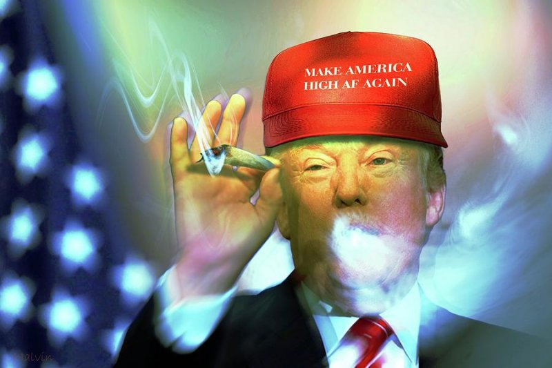 make-america-high-af-again-thomas-birdwell.jpg