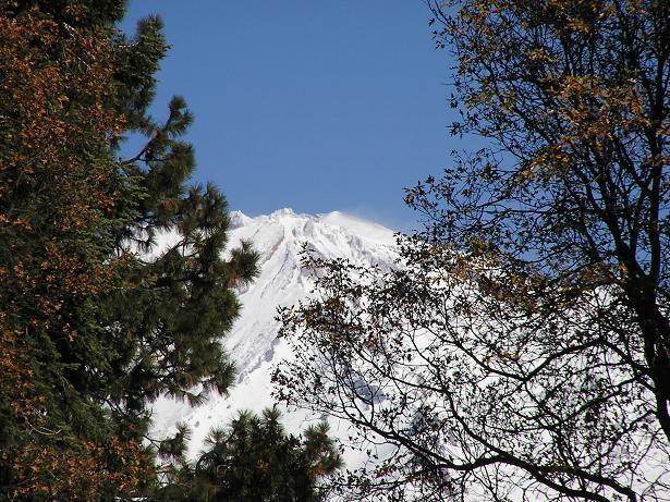 Mt Shasta.JPG