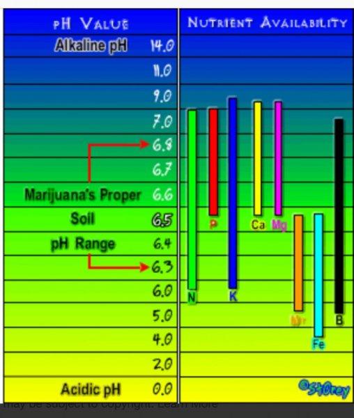 Nutrient Availability Chart.jpeg