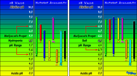 Nutrient_Chart2470.png