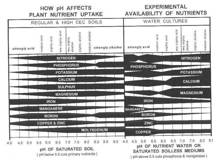 Nutrient_Uptake_and_pH.jpg