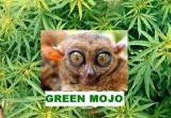 th_GreenMoJo 1.jpg
