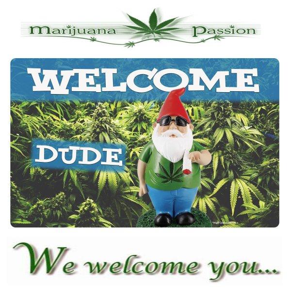 welcome MP.jpg