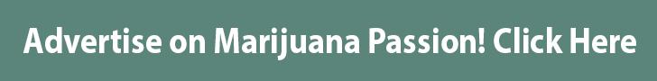 Advertise On Marijuana Passion