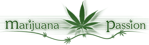 Marijuana Growing Forum